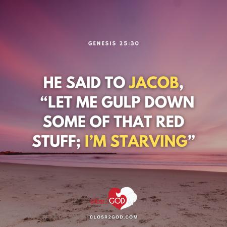 Genesis 25 30