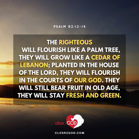 Psalm 92 12 14